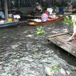 タリンチャン水上マーケット(Talingchan Floating Market)