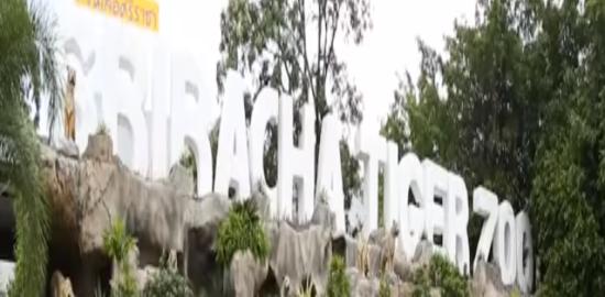 シーラチャ・タイガー・ズー(Sriracha Tiger Zoo)